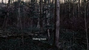 finding trees   find-one