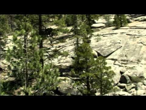 Beaten Path Trailer