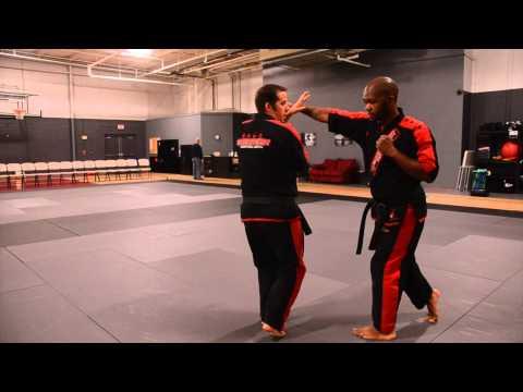 Technique of the Week Goju-Shorei Karate Green #12