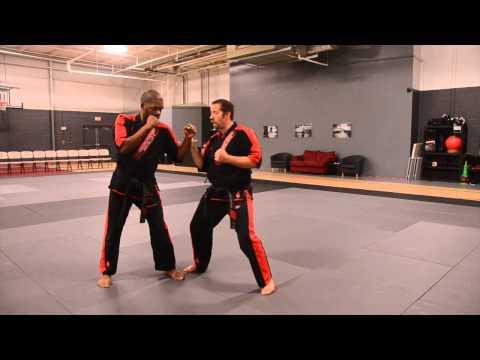 Technique of the Week Goju-Shorei Karate Purple #7