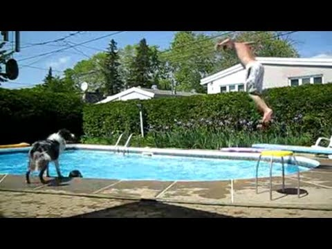 FAIL Compilation 2011 || Best Fails of the Year || Funny!