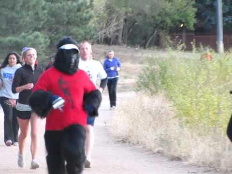 PikesPeakSports.us gorilla makes his move at Jack Quinn's run