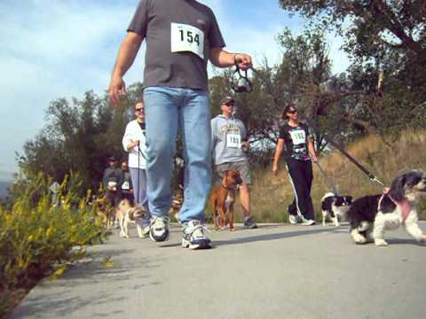 National Mill Dog Rescue Ruff Life Freedom 5K Run/Walk