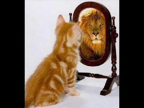 Como mejorar la autoestima.