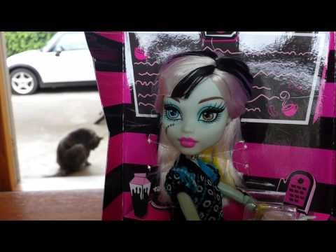 Frankie Stein Coffin Bean - Monster High Review