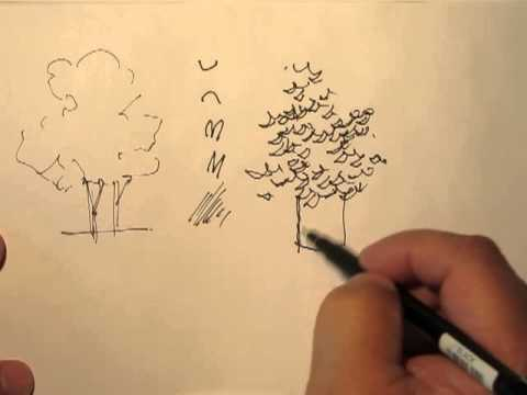 How to draw trees with a pen
