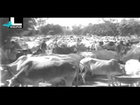 Laagi Nahin Chhute Ram Film