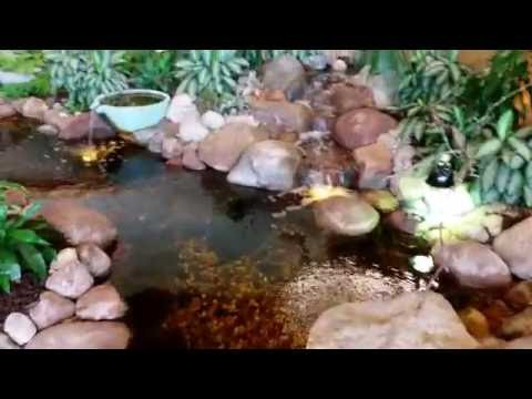 Create a Backyard Pond, a 'Happy Place' with AquaScape