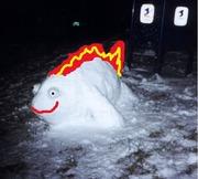 Snowphish Tank