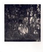 giardino dei tarocchi-l'impiccato