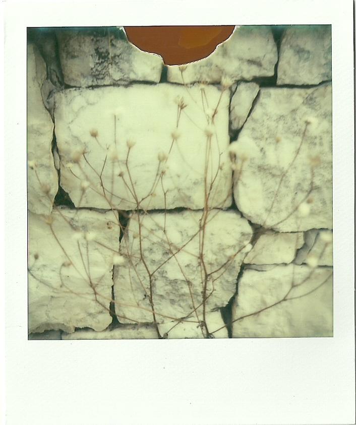 Brain Storming - Racconti in polaroid 2