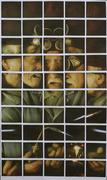 Collector- mosaico Polaroid Spectra