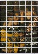 Collector -mosaico Polaroid Spectra