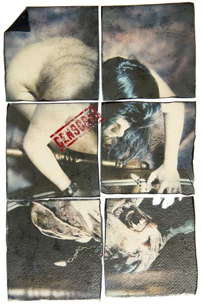 minotauro allo specchio perdutamente  Pasifae