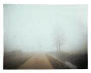 something happens in dense fog