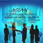 OSIAN OVERSEAS CONSULTANCY