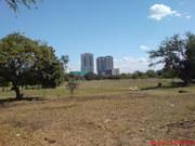 Uhuru Heights na Viva Tower yanavyoonekana kutokea viwanja vya Gymkana