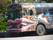 Cosmic Bus