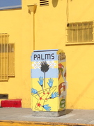 The art of Palms