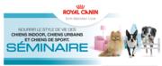 Séminaire: Nourrir le style de vie des chiens Indoor, chiens Urbains et chiens de sport