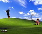 linux-tux-born-2-frag-XP