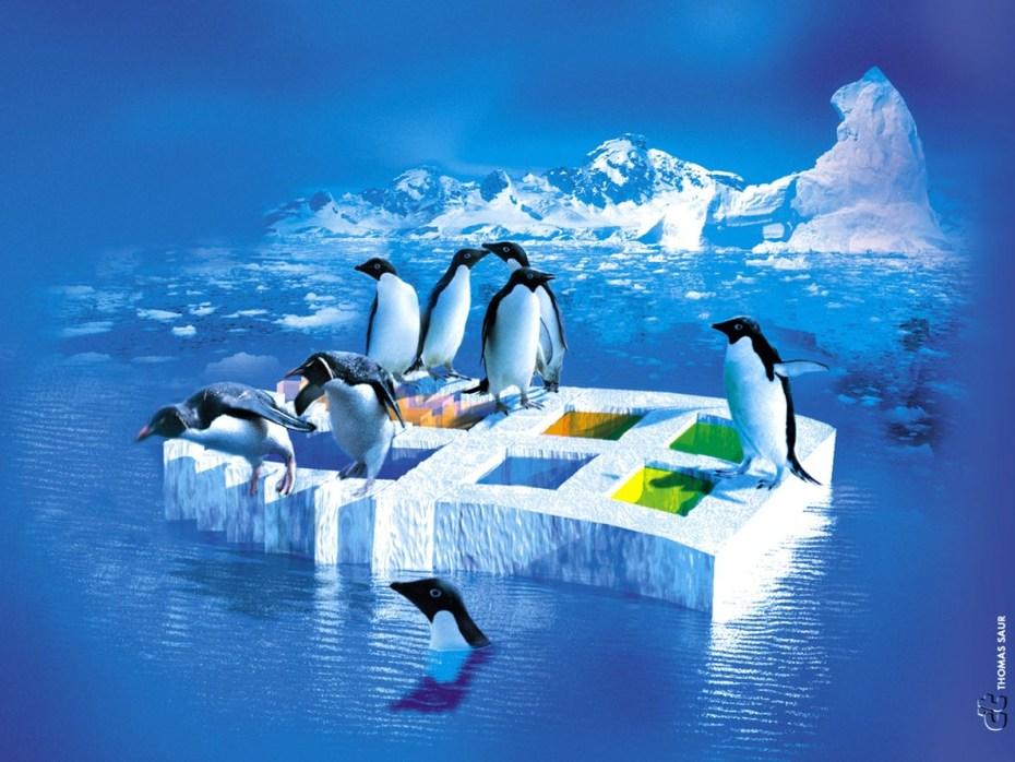linux-tux-penguins-ice