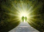 Transcendental Meditation Workshop