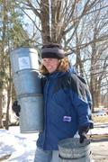 Maple Magic Day at Natick Community Organic Farm