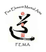 FEMA self-defense classes