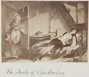 From Painting to Photograph: James Robinson's - The Death of Chatterton