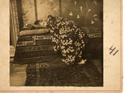 Snapshot: Painters and Photography, Bonnard to Vuillard
