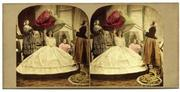 Denis Pellerin. The Victorians and the Stereoscope