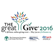 Planning for Success in The Great Give® 2016