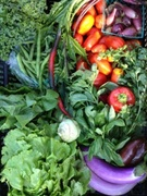 Maximizing your CSA & Farm Stand Offerings #2