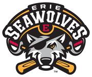 Erie Beer Society Night @ The SeaWolves