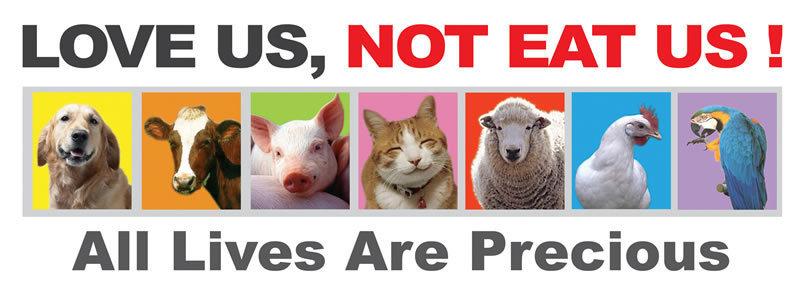 why-go-vegetarian-vegetarians-19285463-800-285