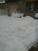 Snowmaggedon