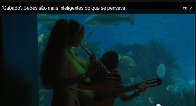 www.oceanario.pt