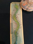 My first bobbin lace piece.