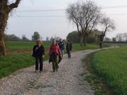 evening walk - Elise, Jo, Sophie, Natasha and Jonathan