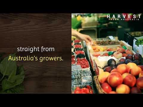 Wholesale Fruit And Veg Suppliers Sydney|harvestfresh.com.au|call us -(02) 9746 6503
