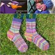 Darkwin Duck-Socken