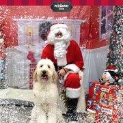 Ellie + Santa