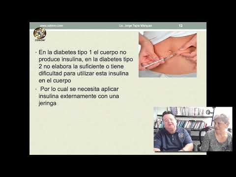 Diabetes 2 Mundo Holistiko 2019