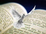Bible%20spirit%20dove