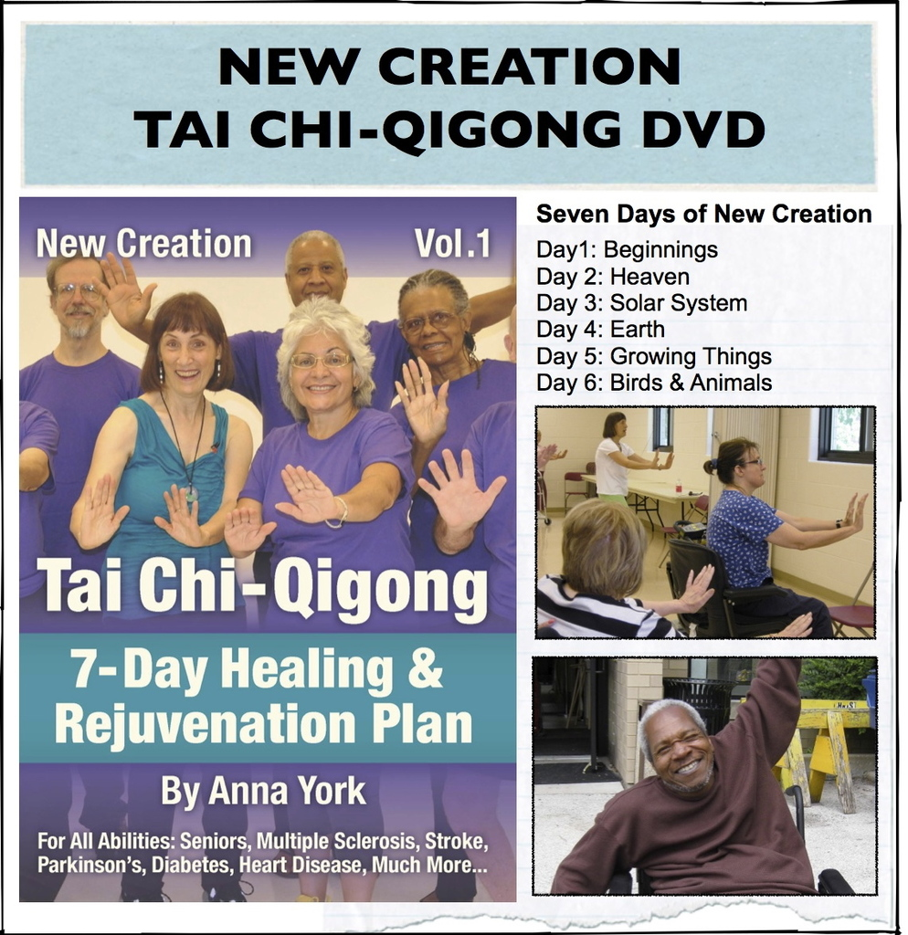 Tai Chi for Seniors, Beginners, All Abilities