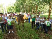 Biblioburro-en-Comunidad-rural-El-Letrero-Nueva-Guinea en Nica
