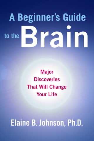 A Beginners Guide to the Brain - The World Cafe Community