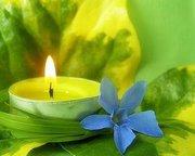 ~ Aromatherapy ~