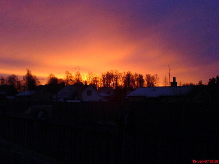 Swedish Morning